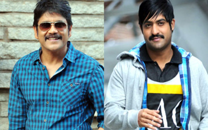 Nagarjuna and Jr.NTR together