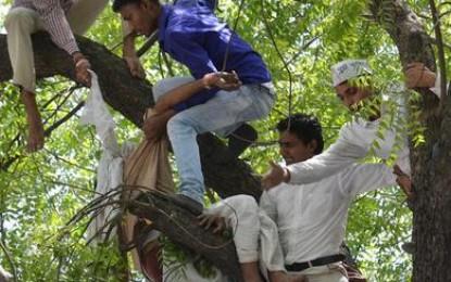 Horror suicide farm visit Delhi