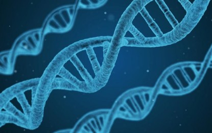Genes behind identified intellectual disabilities, scientists say