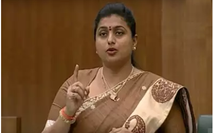Ysrcp Mla Roja Fires On Chandrababu In Assembly